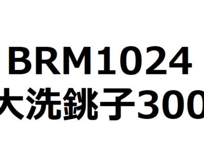 【ブルべ】BRM1024たまがわ300大洗・銚子 試走に行ってきます